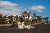 Beautiful house with palm trees on the coast of Tenerife, Canary — Stock Photo