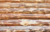 木制的房子,从家庭的多个日志 — 图库照片
