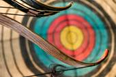 Bow and arrows and target — Stockfoto