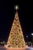 Illuminated Christmas tree at night — Stock Photo