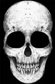 Skull King Poster Vintage Man T shirt Graphic Vector Design — Stock Vector