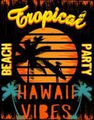 Sunset at tropical beach hawaii — Stock Vector