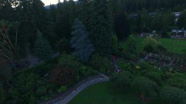 Beautiful garden in alaska — Stock Video