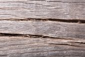 Old wood (bog oak), texture grunge background. — Stock Photo