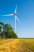 Wheat field and eco power, wind turbines — Stock Photo
