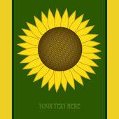 Sunflower oil label — Stock Vector