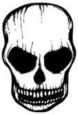 White skull — Stock Vector
