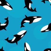 Killer whale seamless pattern — Stock Vector