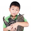 Boy hugging with his cute tiger cat isolated on white background — Stock Photo #62124597
