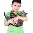 Boy hugging with his cute tiger cat isolated on white background — Stock Photo #62124705
