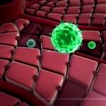 Virus attack the liver — Stock Photo #69954725