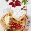 Brie, soft French  cow's milk cheese, autumn leaves and a winegl — Stock Photo #63204971