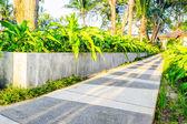 Wandeling manier in tuin — Stockfoto