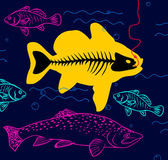 Fish on the hook — Stock Vector