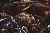 Used carburetor from the fuel supply system of gasoline engine — Stock Photo