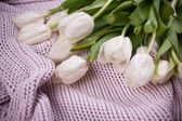 White tulips bouquet on knitted texture background — Stock Photo