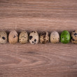 Spotted Quail eggs in a row with one green egg on wooden background — Stock Photo #67605573