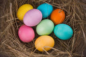 Easter nest with colored eggs  — Stok fotoğraf