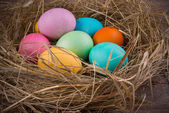 Easter nest with colored eggs — Stock Photo