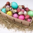 Colorful easter eggs in packing box isolated — Stock Photo #68689031
