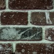 Dark red brick wall with white paint  — Stockfoto #70850949