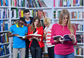 Group of students learnin — Stock Photo