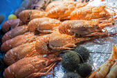 Seafood on ice at the sea market — Stock Photo