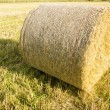 Bale of Straw — Stock Photo #67378425