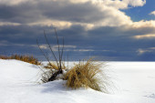 Beautiful winter landscape, and Sea — Stock Photo