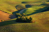 Countryside, San Quirico, Orcia , Tuscany, Italy — Stock Photo