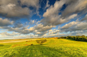 Meadows and cultivated fields — Stockfoto
