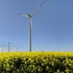 Windmills — Stock Photo #60578089
