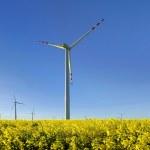Windmills — Stock Photo #60578117