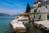 Rose, Montenegro — Stock Photo