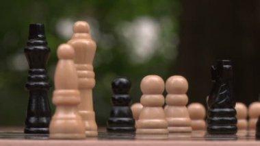 Mann spielt schach — Stockvideo