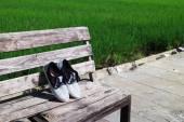 Shoe on Nature — Stock fotografie