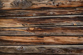 Texture. Wood — Stock Photo
