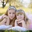 Two little cute girls sisters in pink dresses — Stock Photo #74818837