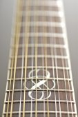 Twelve-string guitar fretboard — Stock Photo