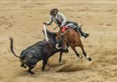 Episode bullfighting . — 图库照片