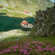 Glacial Balea Lake on Transfagarasan. Carpathians Mountains — Stock Photo #62532483