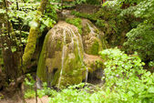 Bigar - the most beautiful waterfall in the world. Carpathians — Stock Photo