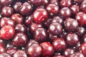 Sour cherry fruits — Stock Photo