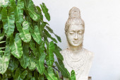 Buddha statue overlooking jungle — Stock Photo