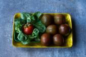 Diyet kızlar için. marul ve domates bir tepside — Stok fotoğraf