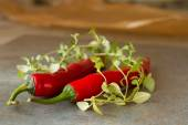 Chili peppers from Mexico on a gray background — Stockfoto