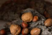 Brown mature nuts on a gray background bark — Stockfoto