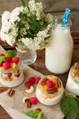 Yogurt for breakfast with nuts, raspberry and milk. — Stock Photo