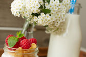 Yogurt for breakfast with nuts, raspberry and milk.  — Foto Stock