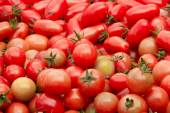 Basket of tomatoes at the farmers market — Stock Photo